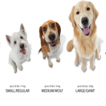 How Does Dog Sizes Matters?
