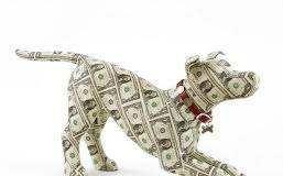 New Pet Cost Calculator