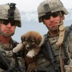 Georgia National Guardsman Adopts the Dog that Saved His Life