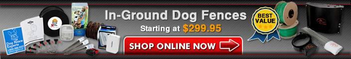 In-Ground Dog Fences