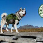 Dog Backpacks