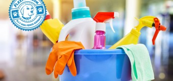 Household Dangers for Pets