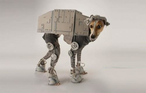 Image credit: Image credit: http://www.business2community.com/social-buzz/30-halloween-costumes-for-dogs-that-will-put-a-smile-on-your-face-01040543#MoUveqLJtUddHU02.97