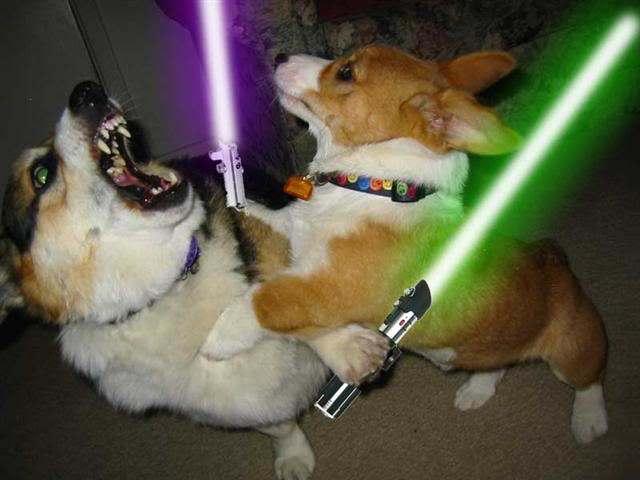 Lightsaber fight