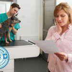 Pet Insurance Policies