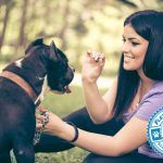 10 Common Dog Training Mistakes