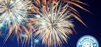 Tips to Protect Your Scared Dog from Fireworks