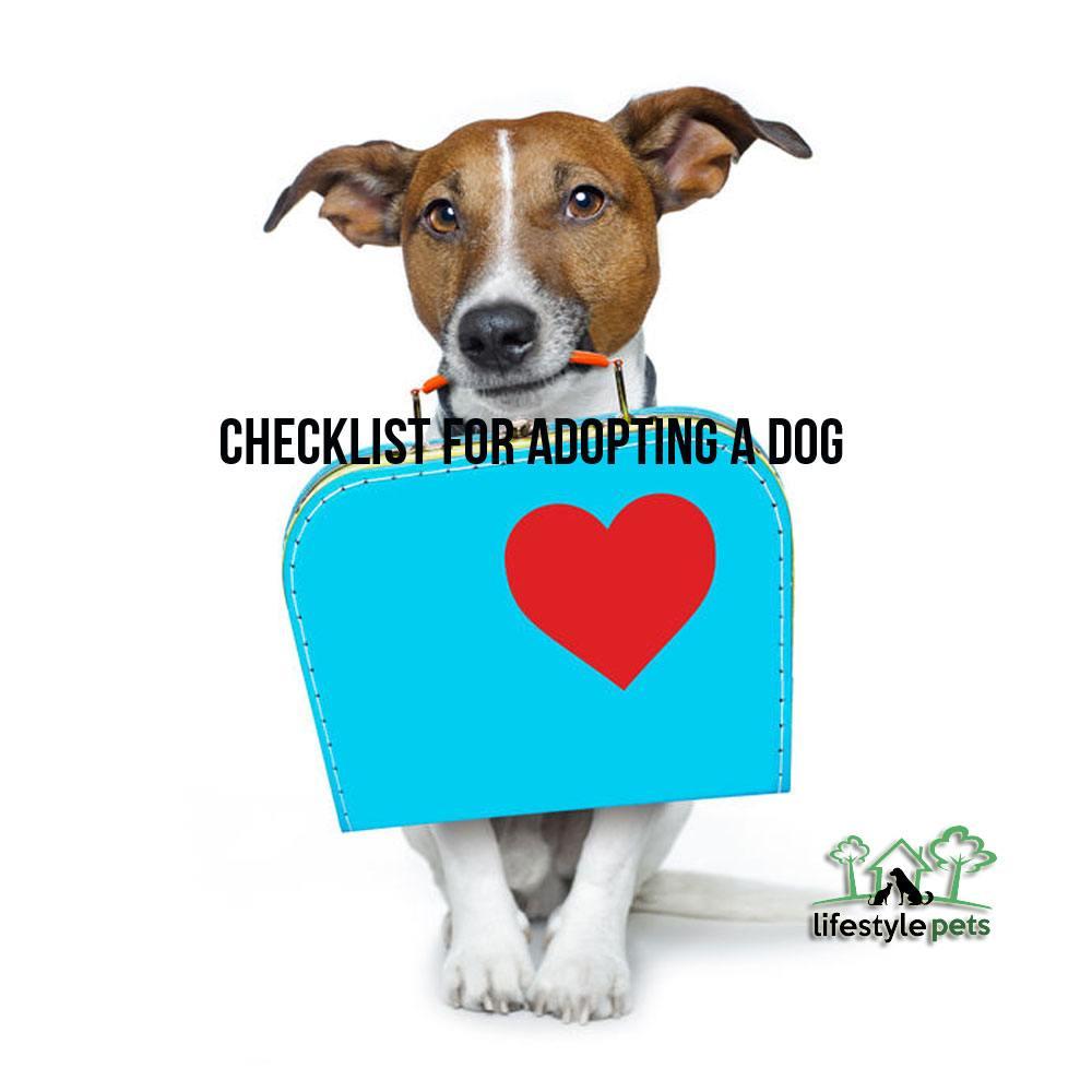adoptingadog