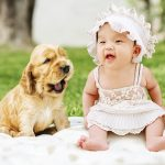 How to Introduce a Dog to a Baby