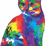 Are Cats Colorblind?