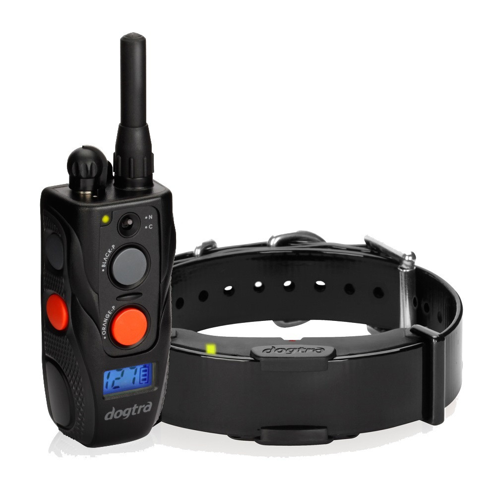 Dogtra Arc Remote Trainer
