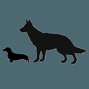 Wireless Dog Fence Comparison