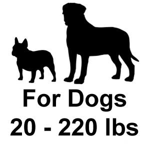 Innotek PetSafe Contain N Train For Dogs 20+ lbs.