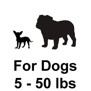 PetSafe Elite Little Dog Fence for Dogs 5-50 lbs