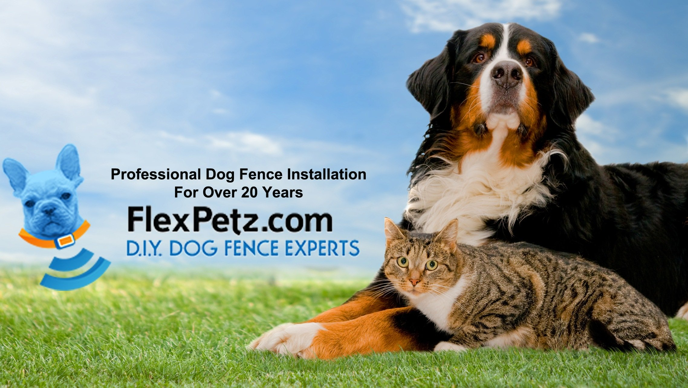 Flextpetz DIY Dog Fence Specialists