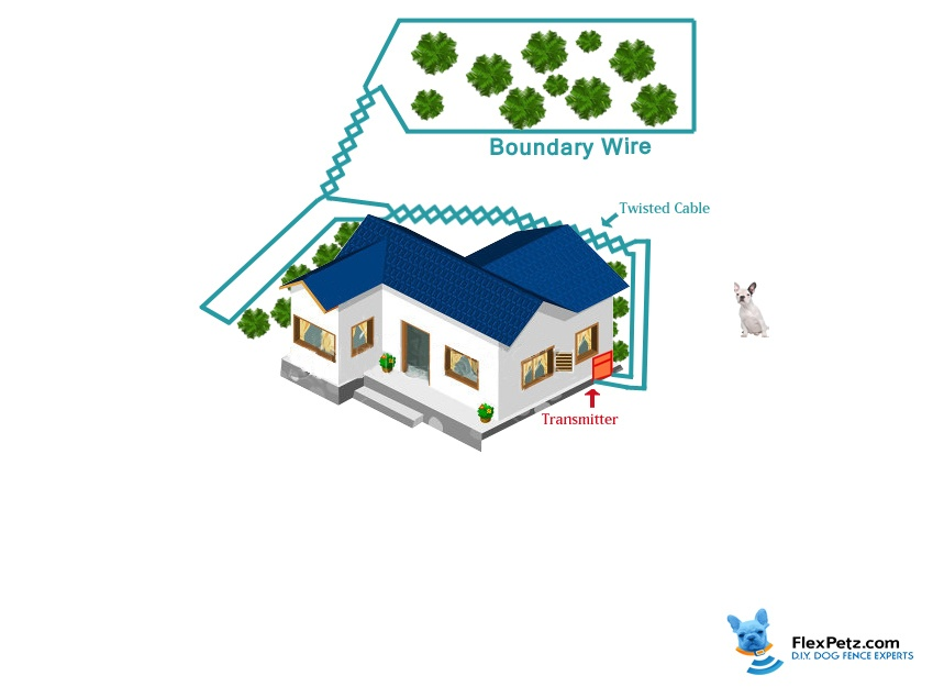 avoidance only dog fence layout